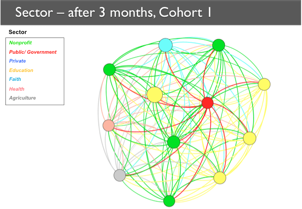 A network map showing Cohort 1 after three months. The nodes form a more circular pattern as compared to baseline, and there are many more relationships among them.